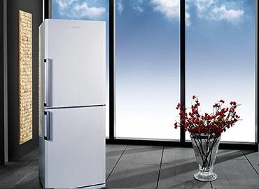 Blomberg Fridge/Freezer