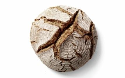 hydro baking bread
